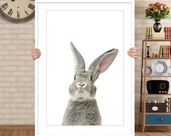 Rabbit Print, Bunny Print, Grey Rabbit, Animal Wall Art, Rabbit Poster, Animal Print, Printable Wall Art, Rabbit Photo