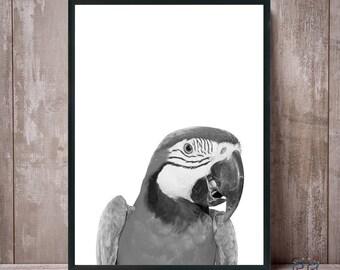 Parrot Print, Black and White Parrot, Macaw Print, Parrot Wall Art, Parrot Photo, Parrot Poster, Bird Print, Tropical Decor, Tropical Print