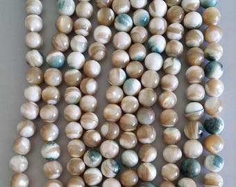 Sea Shell Strands (12mm Round Beads)