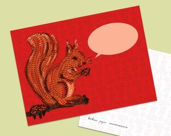 postcard squirrel red