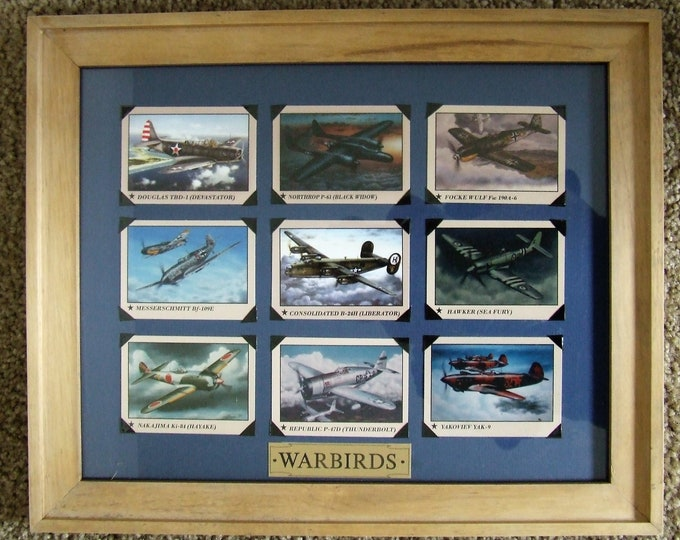 """11"""" X 14"""" Natural Wood Framed WARBIRD Aircraft - Mounted with Photo Tabs"""