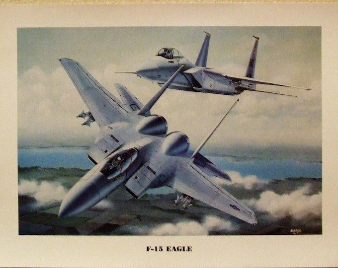 """12"""" X 16"""" unframed print of two McDonnell Douglas F-15 Eagles in hot pursuit of their prey!"""