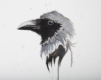 Raven - Original Watercolor Painting