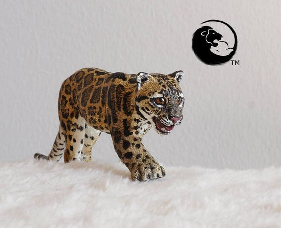 Sunda Clouded Leopard The Complete Feline Series Etsy