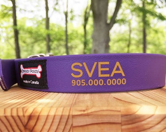 Leather Alternative Waterproof Dog Collar - Personalized Smoochy Poochy Dog Collar with Tag-Less Pet ID