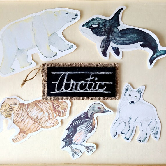 Arctic Animal Printable  Instant Download  Montessori
