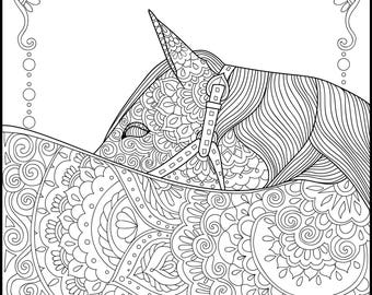 horse adult coloring pages Printable Coloring Page Adult Coloring Pages Horse | Etsy horse adult coloring pages