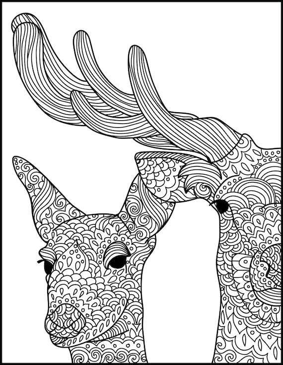 wildlife coloring pages deer - photo#34