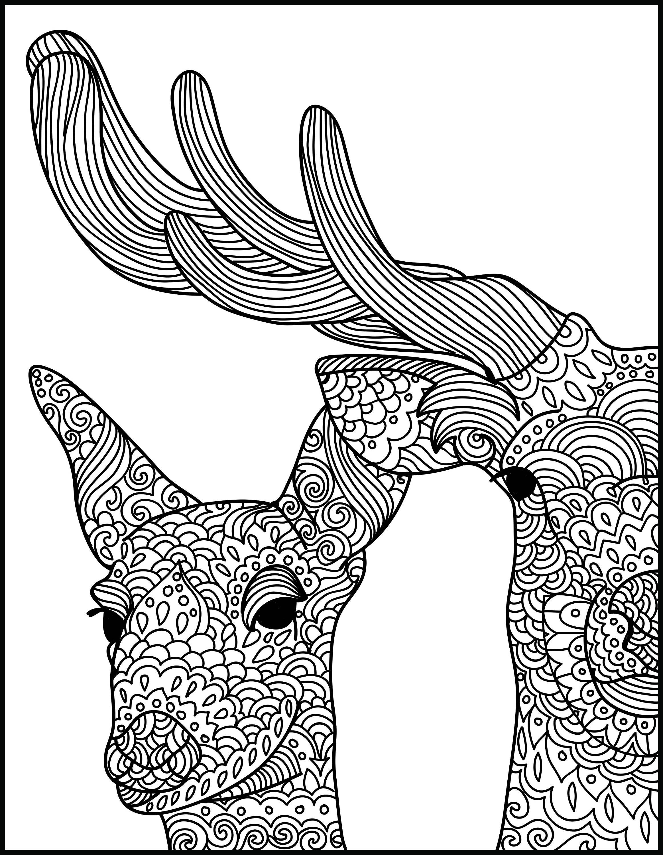 Animal Adult Coloring Page Deer Printable Coloring Page Etsy