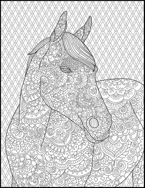 Horse Coloring Page for Adults - Adult Coloring Pages - Printable Coloring  Page - Horse Lover Gift- Animal Coloring Page - Grown up Coloring