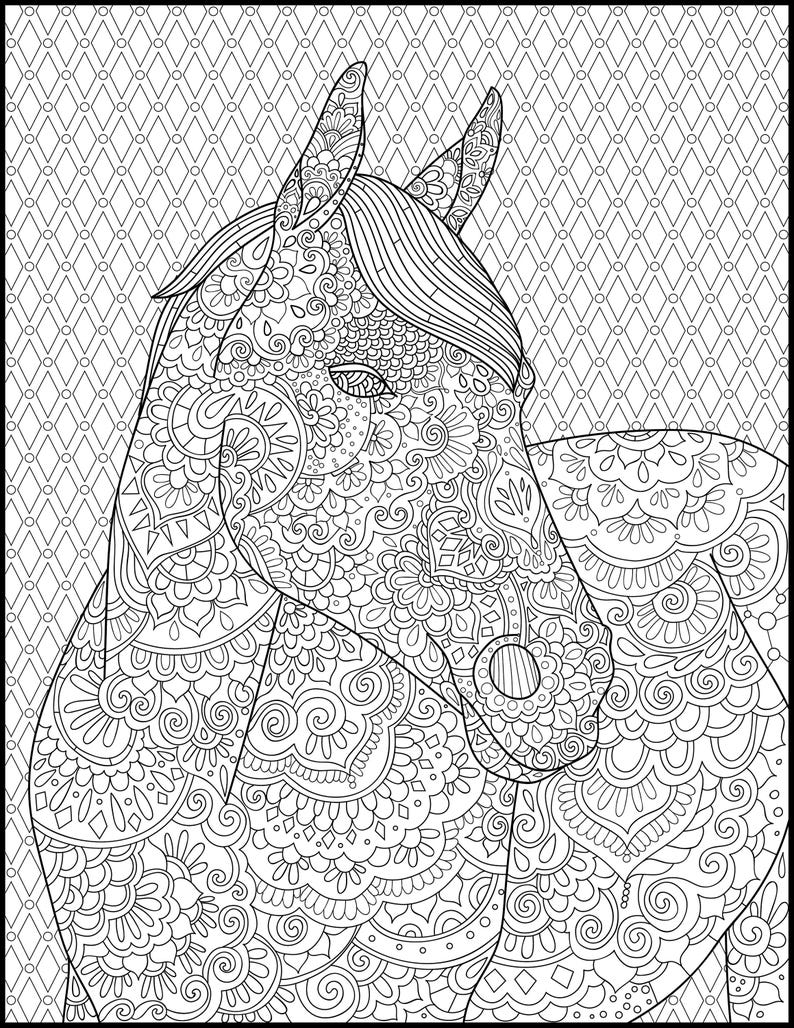 Horse Coloring Page for Adults Adult Coloring Pages | Etsy