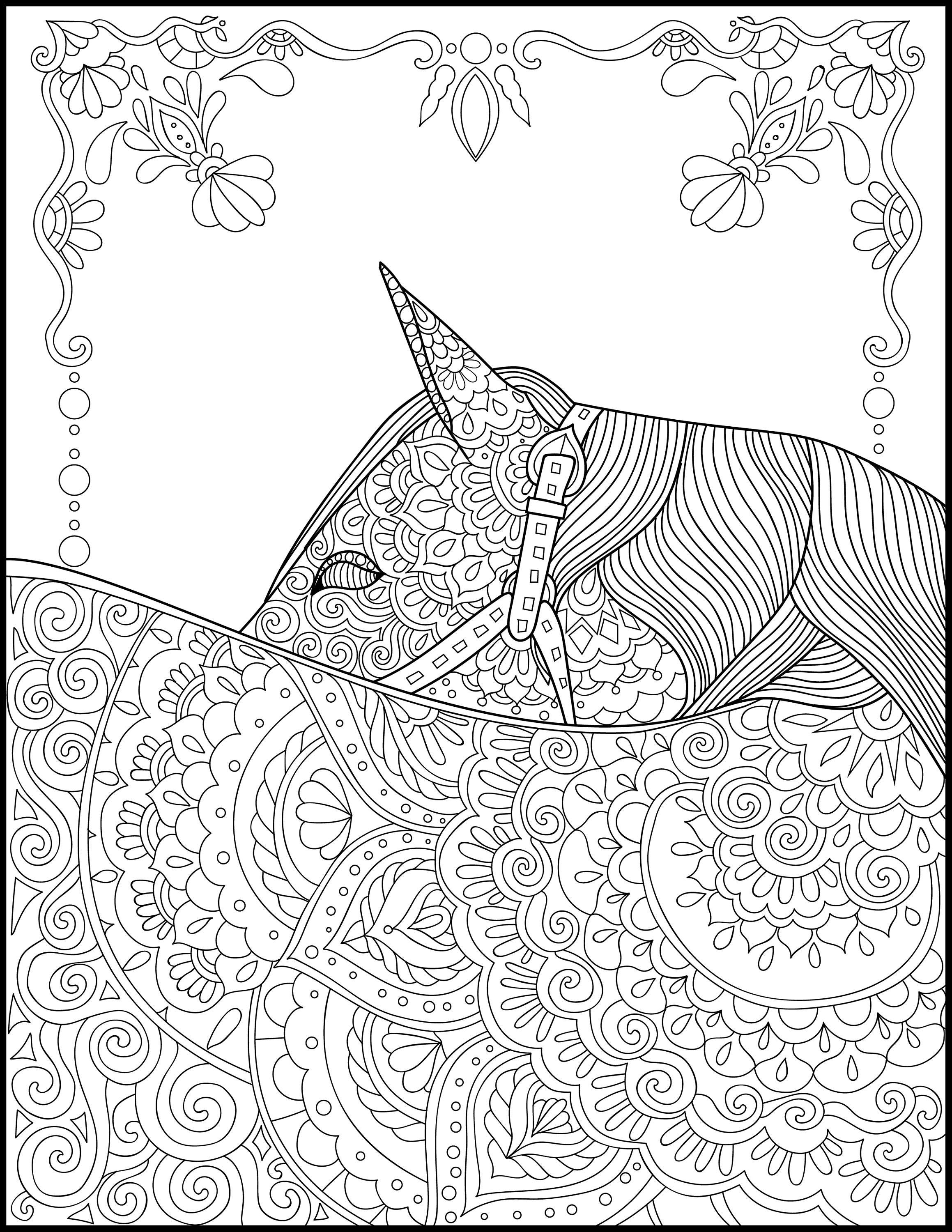 Printable Coloring Page Adult Coloring Pages Horse | Etsy