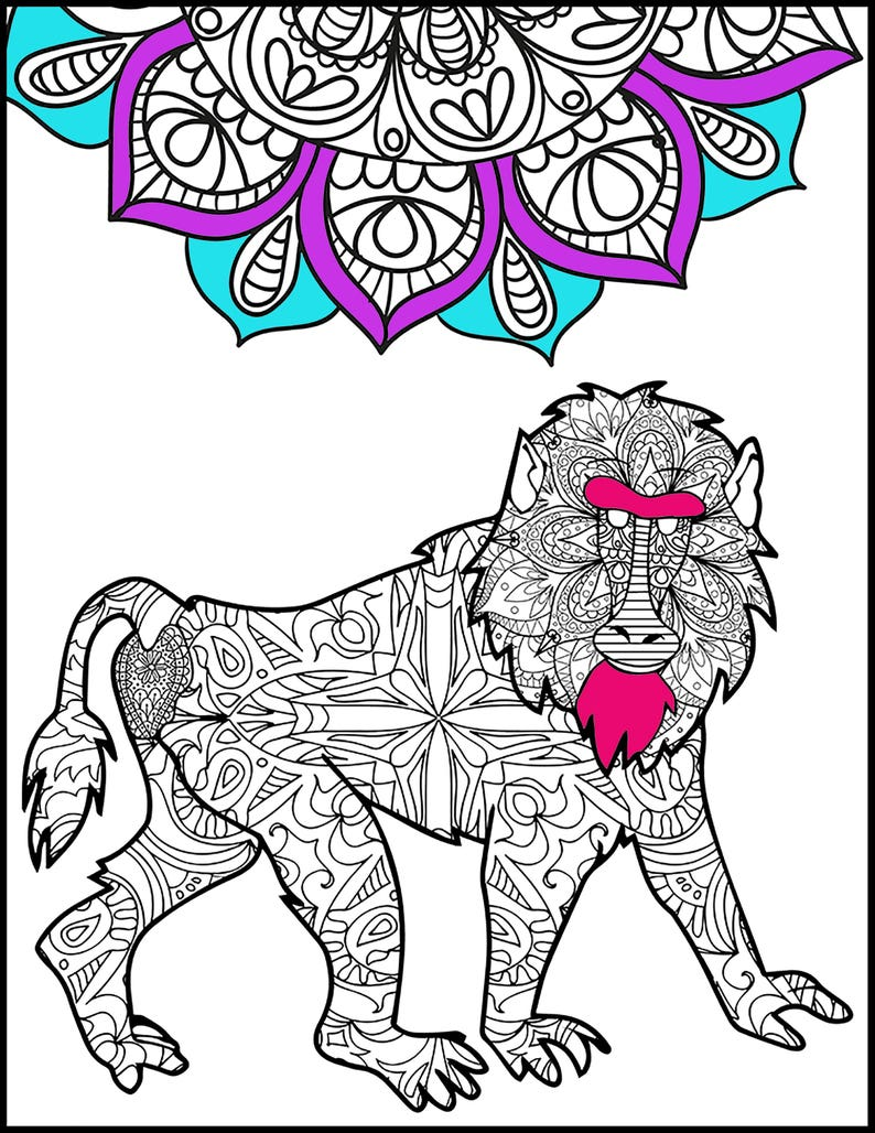 Baboon Adult Coloring Pages Coloring Page For Adults Etsy