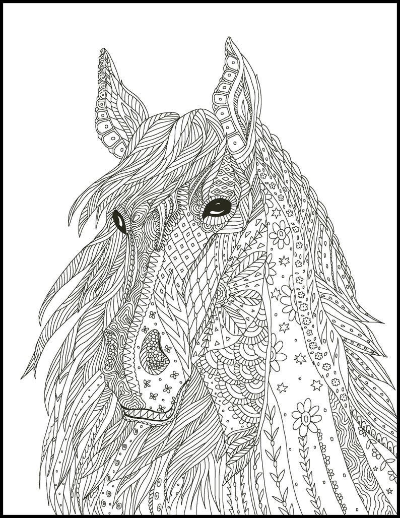 Horse Coloring Pages For Adults Coloring Pages Horse Adult 2 ...