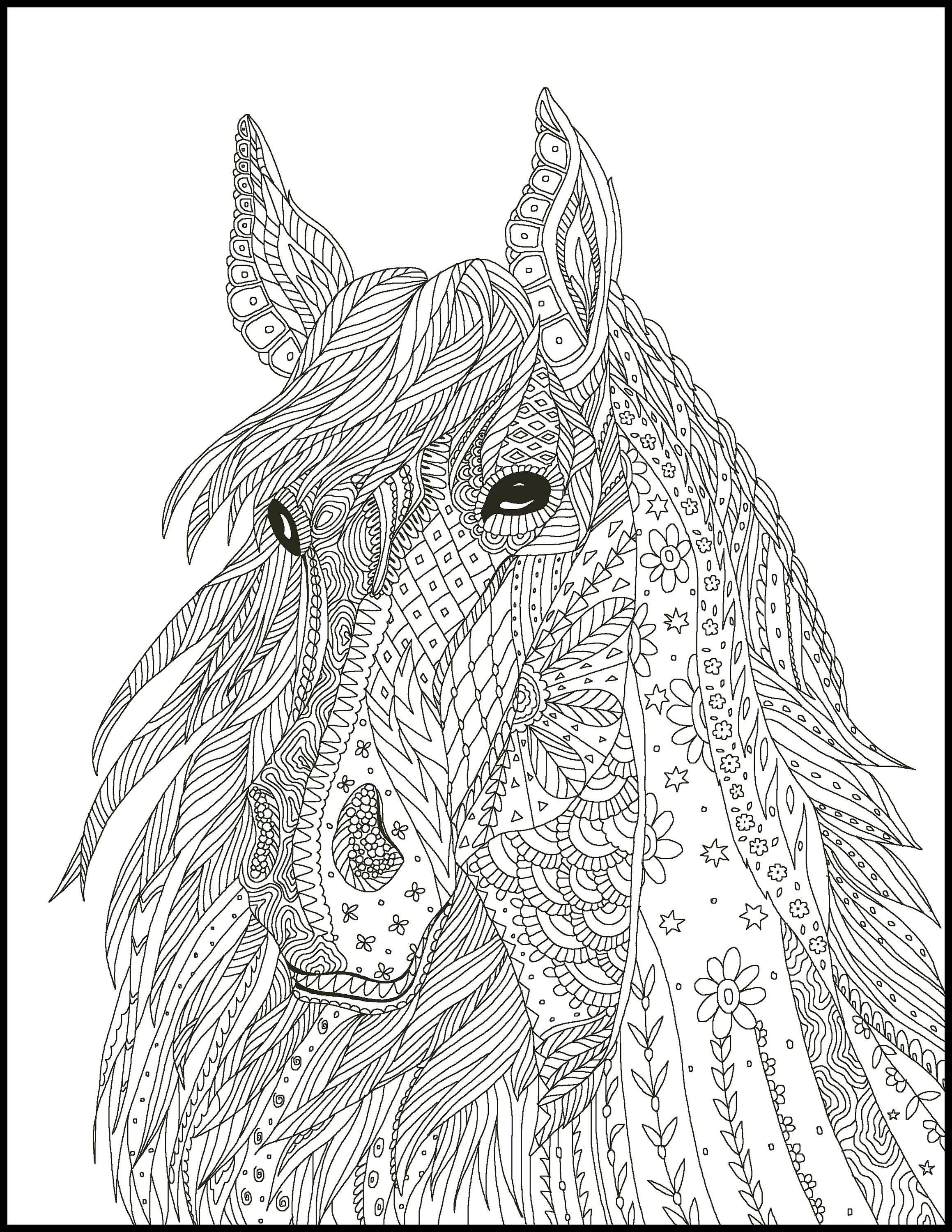 2 Printable Coloring Page for Adults and Kids Fun Coloring ...
