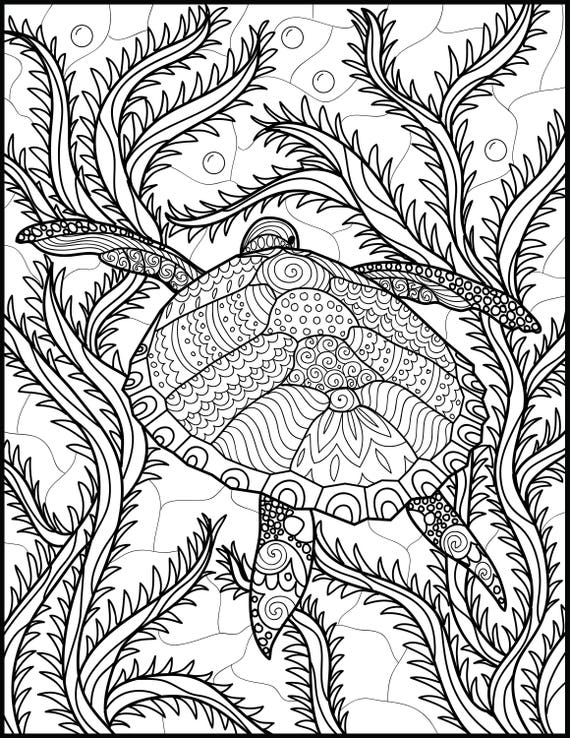 2 Adult Coloring Pages Animal Coloring Page Printable Coloring Pages Ocean Coloring Pages Turtle Lovers Gift Coloring Pages For Adults