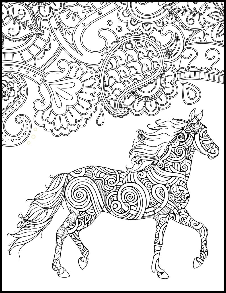 Horse Coloring Page for Adults - Horse Adult Coloring Page - Printable  Coloring Page - Horse Lover Coloring Page Gift - Animal Coloring Page