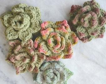 Crochet Succulent Pattern - Rosette Succulent