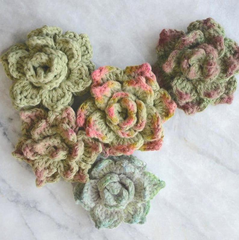 Crochet Succulent Pattern  Rosette Succulent image 0