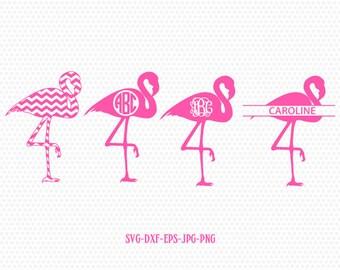 Flamingo monogram frame-Flamingo svg, pink Flamingo Monogram svg, Bird svg, summer,frame clipart Cricut download svg jpg png dxf Silhouette