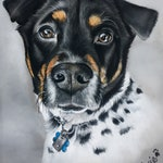 Custom Dog portrait, Pet portrait, Dog Drawing, Dog art, art by Karly Marie