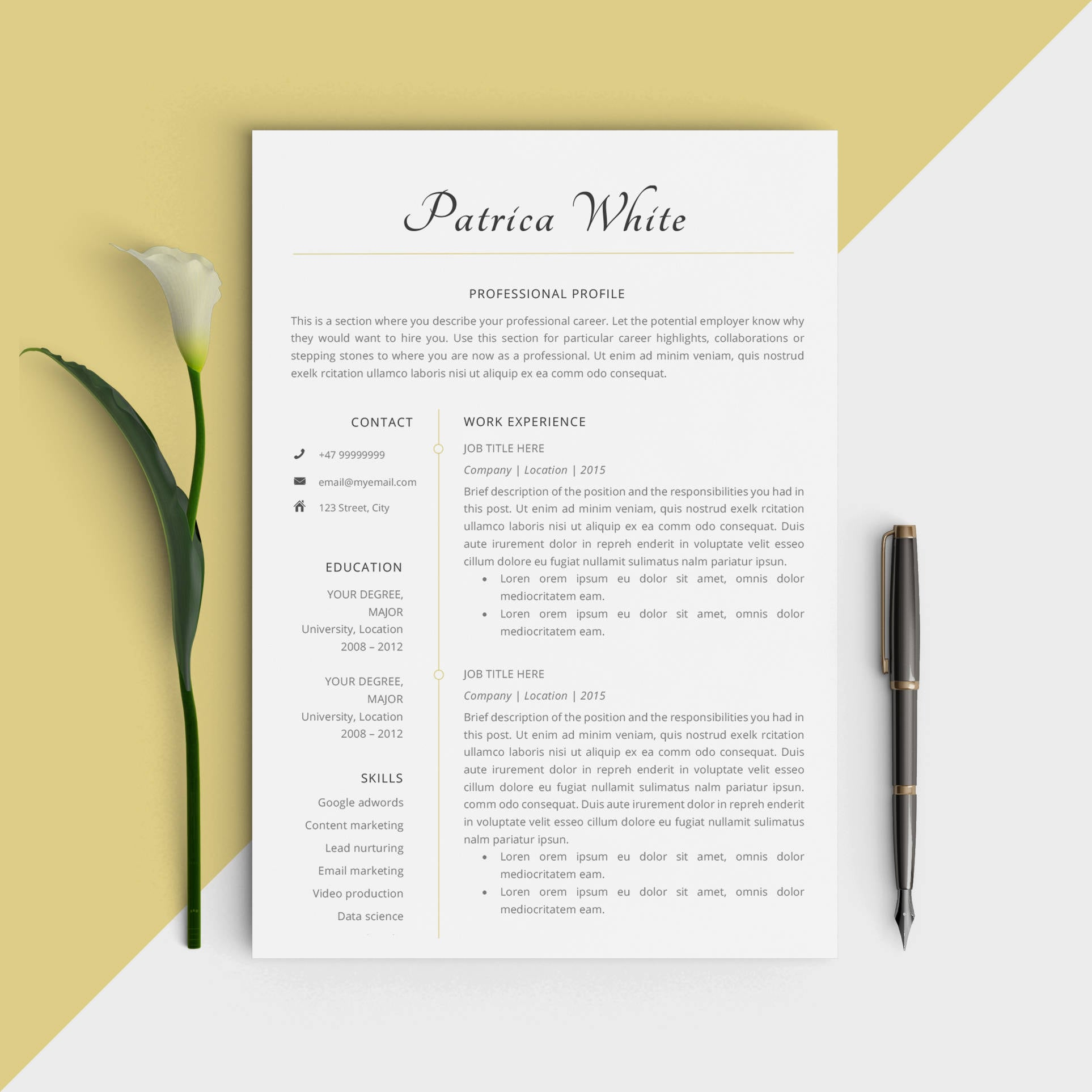 Professional Job Resume Template Modern Personal CV Design