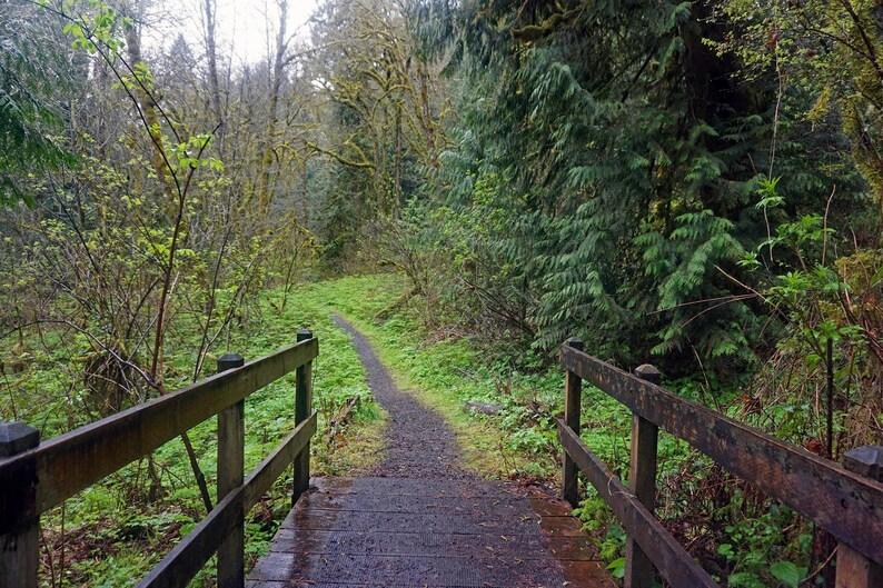 Bridge Pathway | Etsy