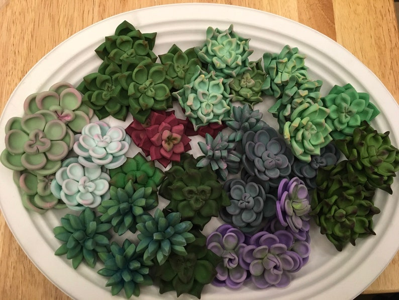 36 Succulent Cupcake Toppers 3 dozen image 0