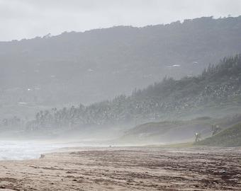 Misty Beach - Barbados