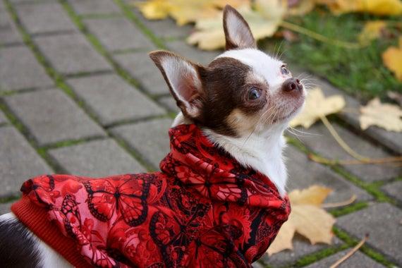Junge Hunde Hoodie Pullover Pitbull Hund Hoodie Pitbull   Etsy