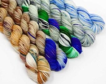 Mallard Set - 5x20g - 4 Ply / Sock - Superwash Merino / Nylon - Hand Dyed Yarn