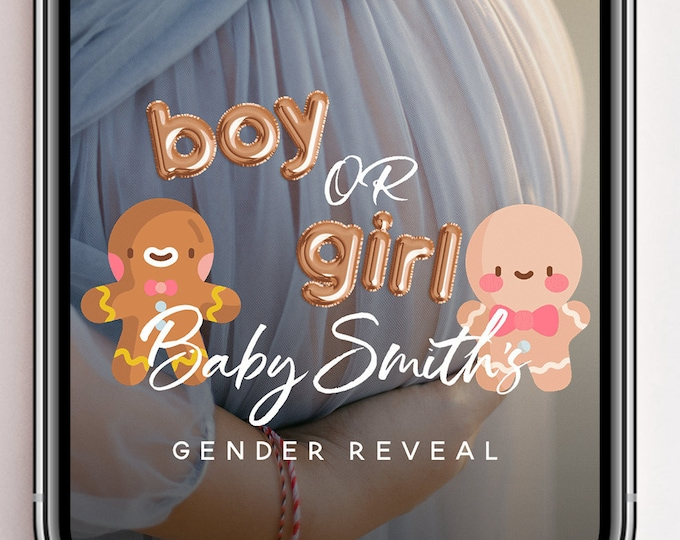 Gender Reveal Geofilter, Snapchat Filter, Gender Reveal Geofilter, Gender Reveal Party Gender Reveal Game, Guess the Sex Snapchat Filter, B1