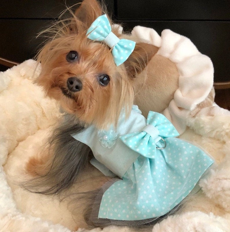 Party Clothes For Pets Pet Attire Pet Harnesses Dog Dress Custom Harness For Pets Puppy Supplies Cat Dress Teal Wedding Dog Harness