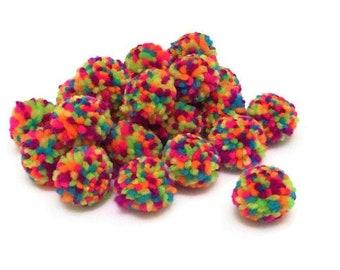 Pack of 10 Yarn Pom Pom Balls, 1 inch, Rainbow Pom Pom for Crafts, Math Activities, Busy Bags, Sensory Bins, Fine Motor Games for Preschool