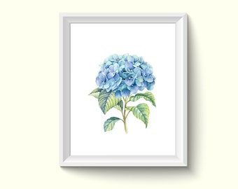Hydrangea Flower Watercolor Painting Poster Art Print P152