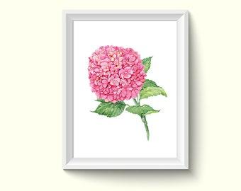 Hydrangea Flower Watercolor Painting Poster Art Print P475