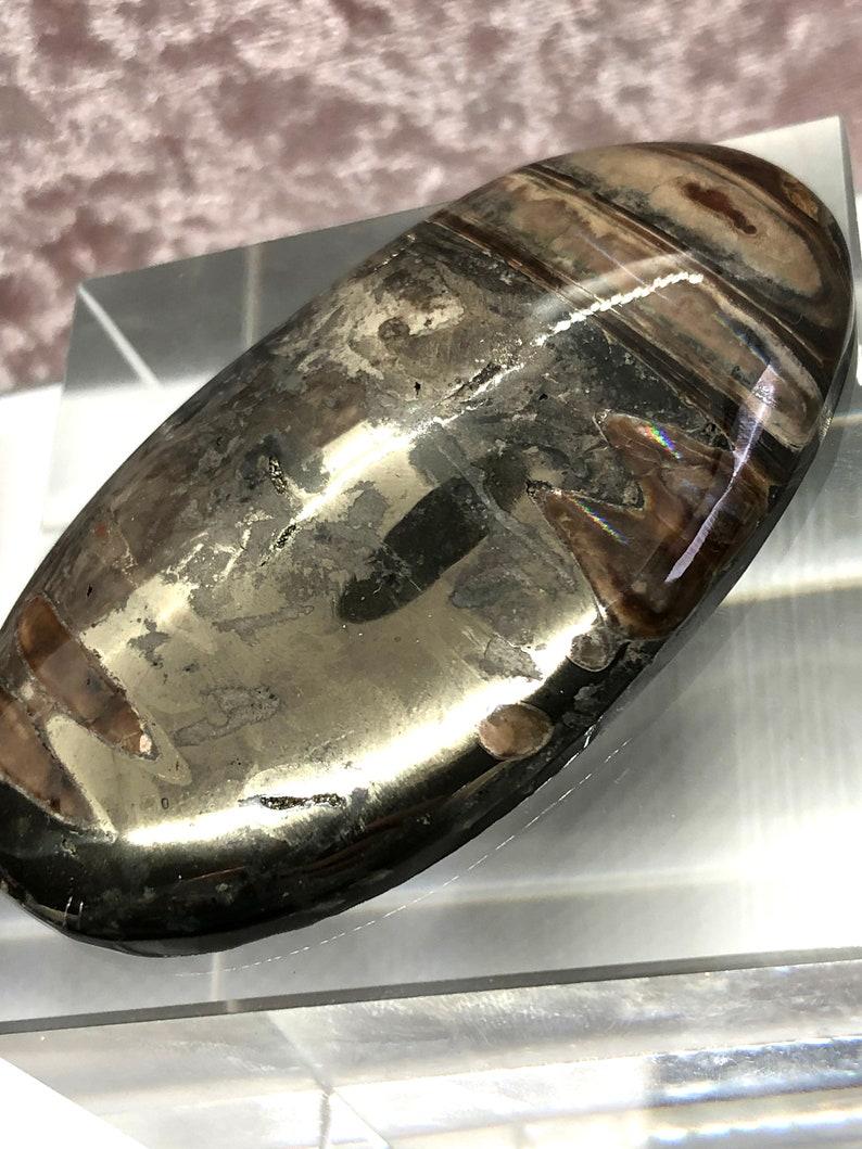 Ammonite cabochon with Pyrite High grade Sea Fossil cabochon Russian Ammonite cabochon Designer Cabochon