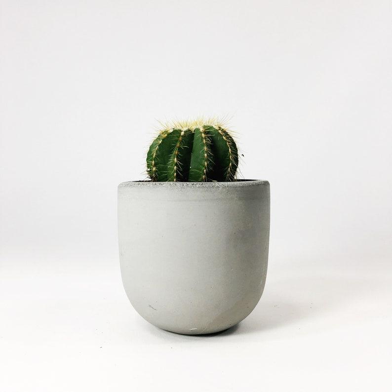 Small Concrete Bowl Planter  Light Gray