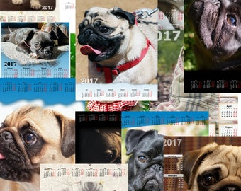 55+ high quality 2017 wall calendars for Pug Lovers