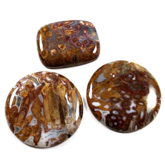 Pierre d'Agate naturelle palmier rouge racine Cabochon, ronde, octogone forme pierres précieuses en vrac pour la fabrication de bijoux, 165,65 Cts 3 Pcs en gros Lot, LAB-30