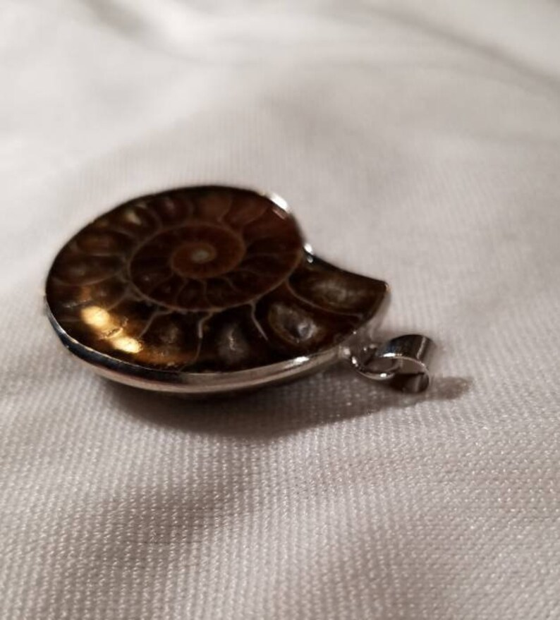 Fibonacci Fossil Silver Lined Fossilized Spiral Shell Crystal Pendant Necklace