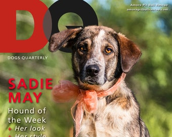 RESCUE OVERLAYS Photoshop Magazine Template Pet Adoption Shelter Overlay