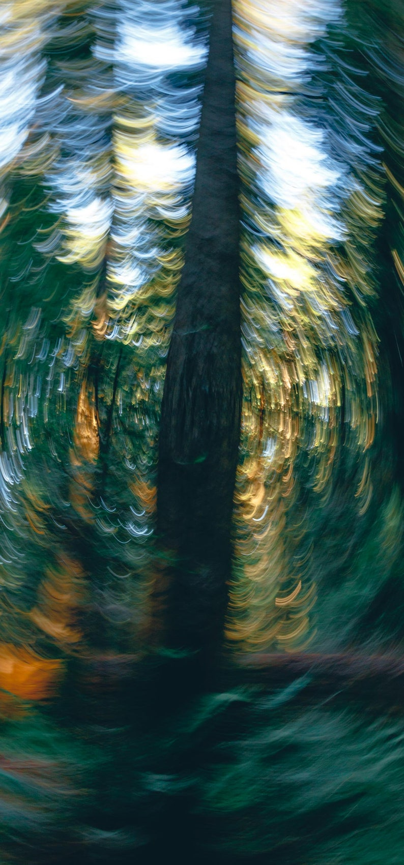 Redwood Forest Abstract Wallpaper Iphone X Iphone Xs Etsy