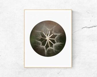 Dandelion Print, A4 Print, Minimalist Print, Macro Print, Macro Photography Print, Dandelion Art, Digital Prints