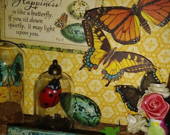 Handmade Decorative and Inspirational Shadowbox - Butterfly Themed