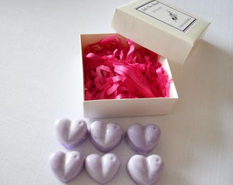 Warm Gingerbread Scented Soy Wax Melts, Christmas Scent, Christmas Wax Melt, Soy Wax