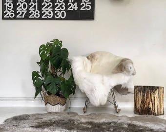 Rare Breed White/ Gray/ Grey Reindeer Hide Rug Throw Skin