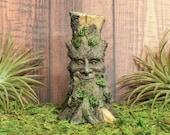 Miniature Fairy Garden Tree with Face Mini Green Man Figurine Wood Spirit Statue Spooky Tree for Halloween Decoration Accessories Supply Kit