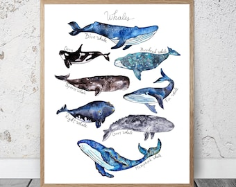 Watercolor Whales Print Sale Kids Room Decor Nursery Boys Nautical Ocean Print Whale Illustration Whale Poster Whale Wall Decor Whale Art