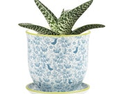 Cottage Style Wee Pots - Decorate Your Own Mini Garden With the Tiny Stylish Planter.